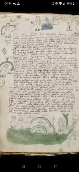 Leak Project Voynich Manuscript Image